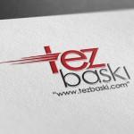 tezbaski-logo